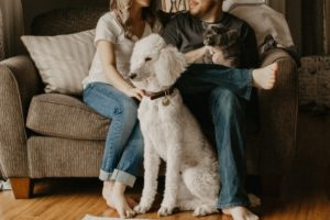 A couple sitting on a couch with their dog.